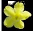 join flower