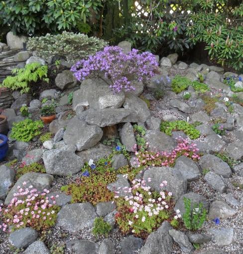 Rock_Garden.jpg