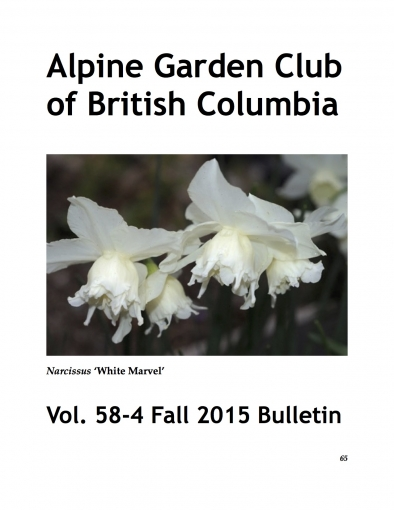 AGCBC_Fall_Bulletin_cover.jpg